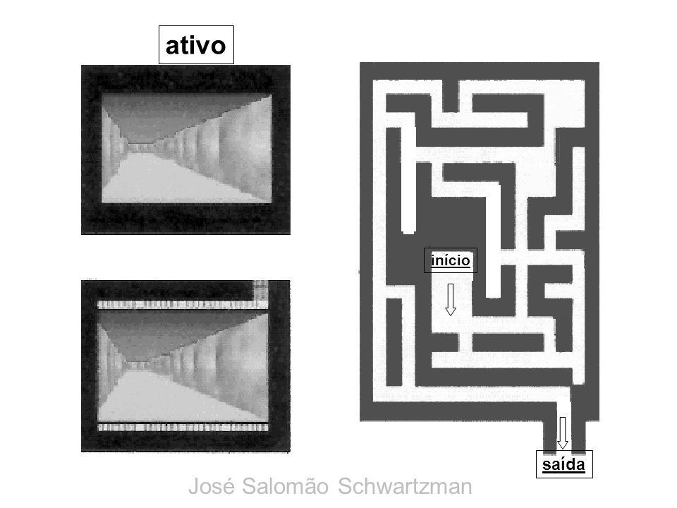 ativo início saída José Salomão Schwartzman