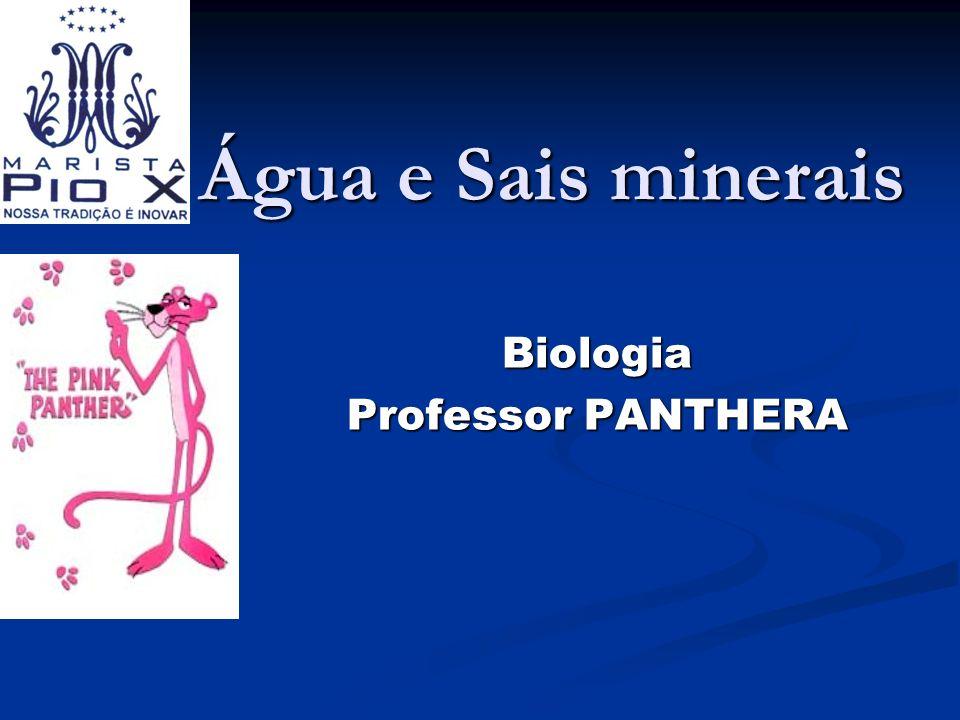 Biologia Professor PANTHERA