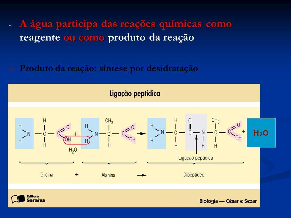 A água participa das reações químicas como reagente ou como produto da reação