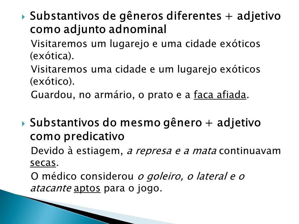 Substantivos de gêneros diferentes + adjetivo como adjunto adnominal