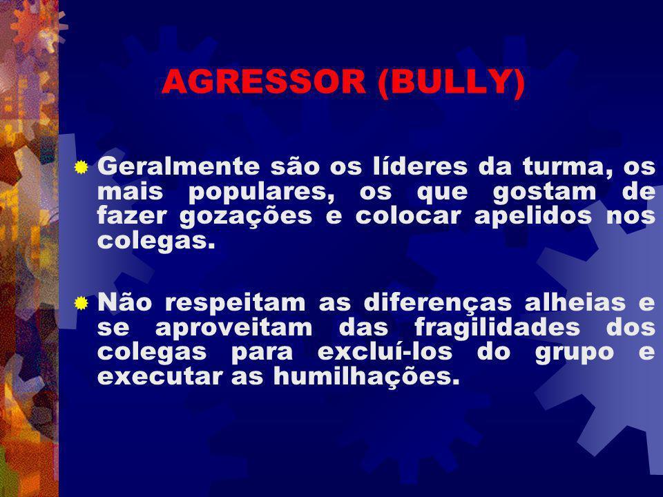 AGRESSOR (BULLY) Geralmente são os líderes da turma, os mais populares, os que gostam de fazer gozações e colocar apelidos nos colegas.