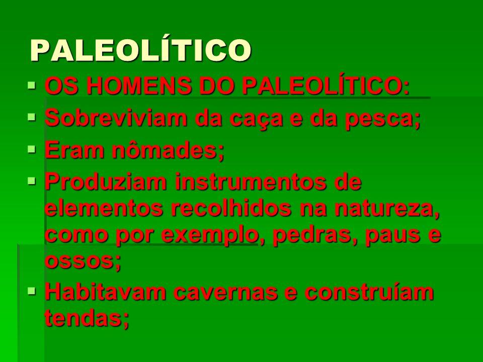 PALEOLÍTICO OS HOMENS DO PALEOLÍTICO: Sobreviviam da caça e da pesca;