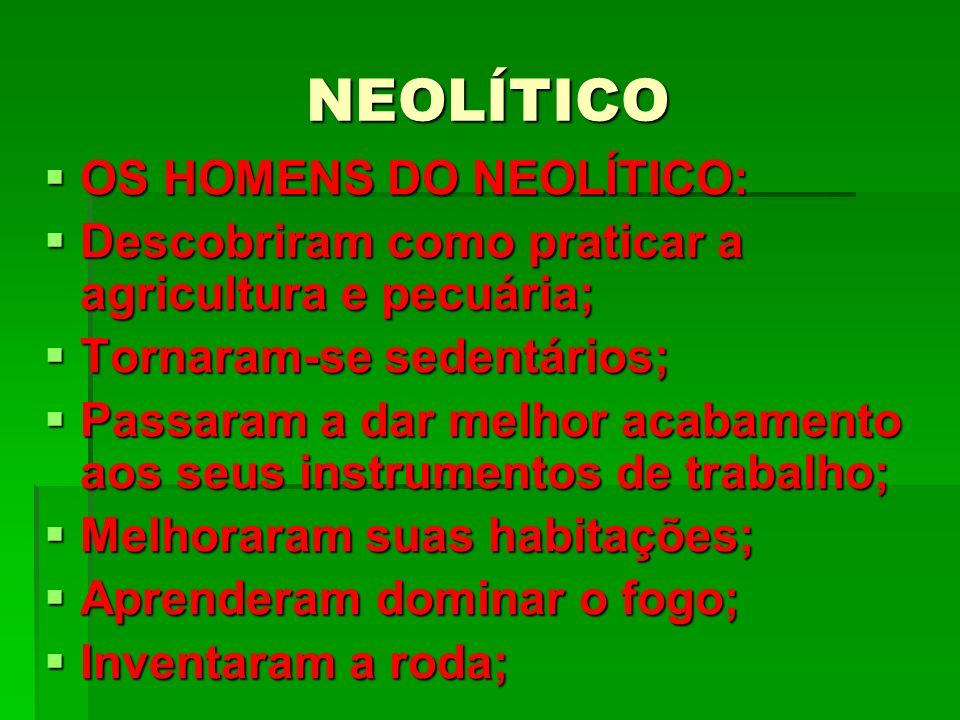 NEOLÍTICO OS HOMENS DO NEOLÍTICO: