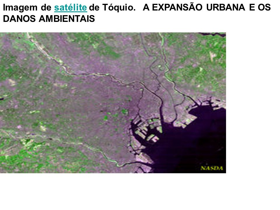 Imagem de satélite de Tóquio. A EXPANSÃO URBANA E OS DANOS AMBIENTAIS