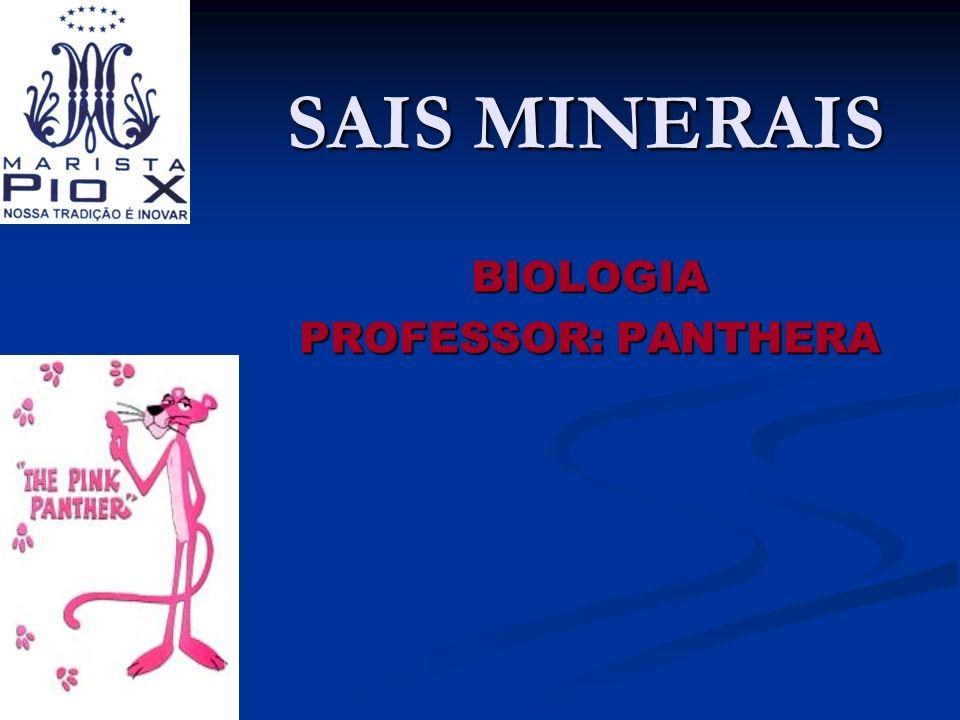 BIOLOGIA PROFESSOR: PANTHERA