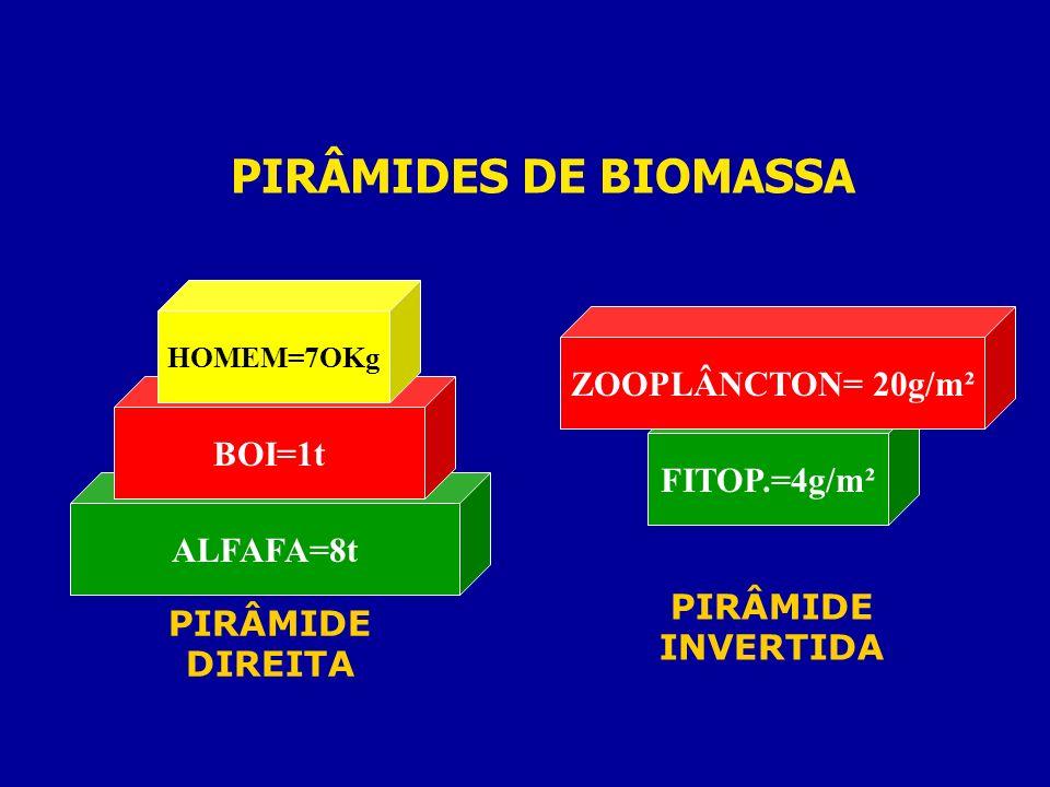 PIRÂMIDES DE BIOMASSA ZOOPLÂNCTON= 20g/m² BOI=1t FITOP.=4g/m²