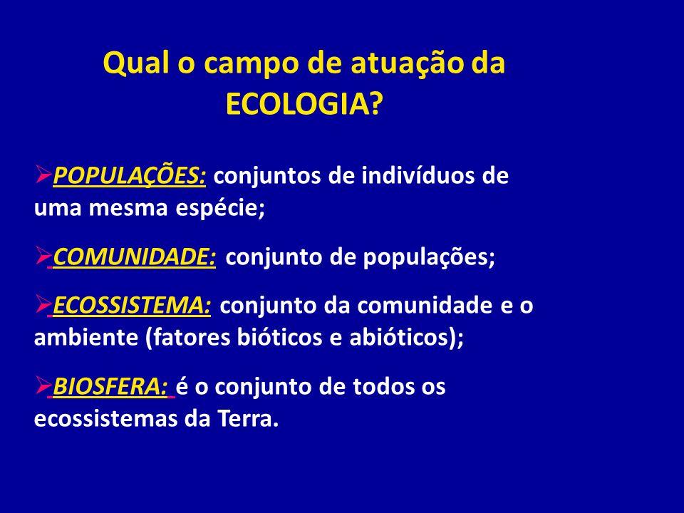 Qual o campo de atuação da ECOLOGIA