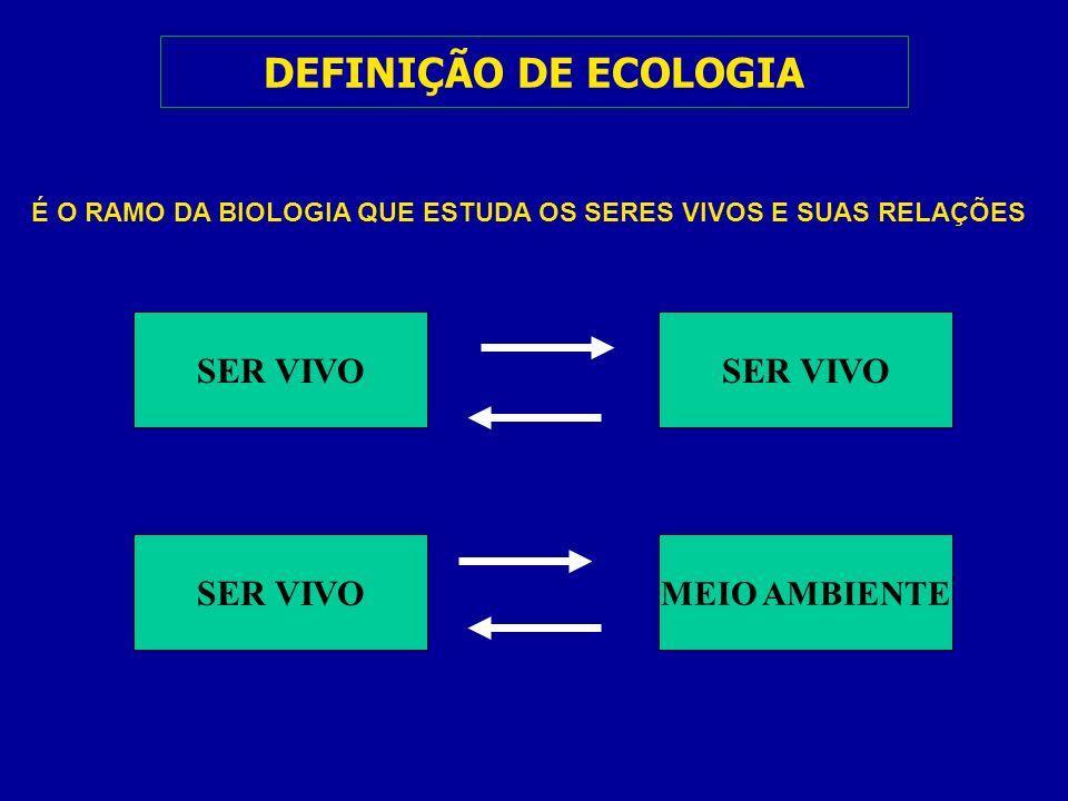 DEFINIÇÃO DE ECOLOGIA SER VIVO SER VIVO SER VIVO MEIO AMBIENTE