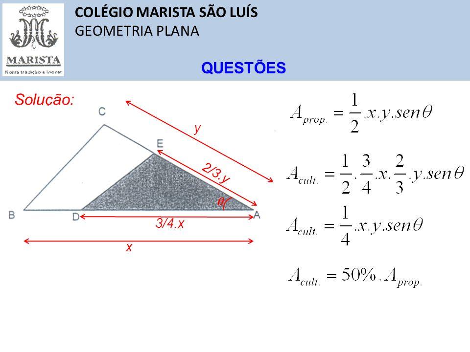 COLÉGIO MARISTA SÃO LUÍS GEOMETRIA PLANA QUESTÕES