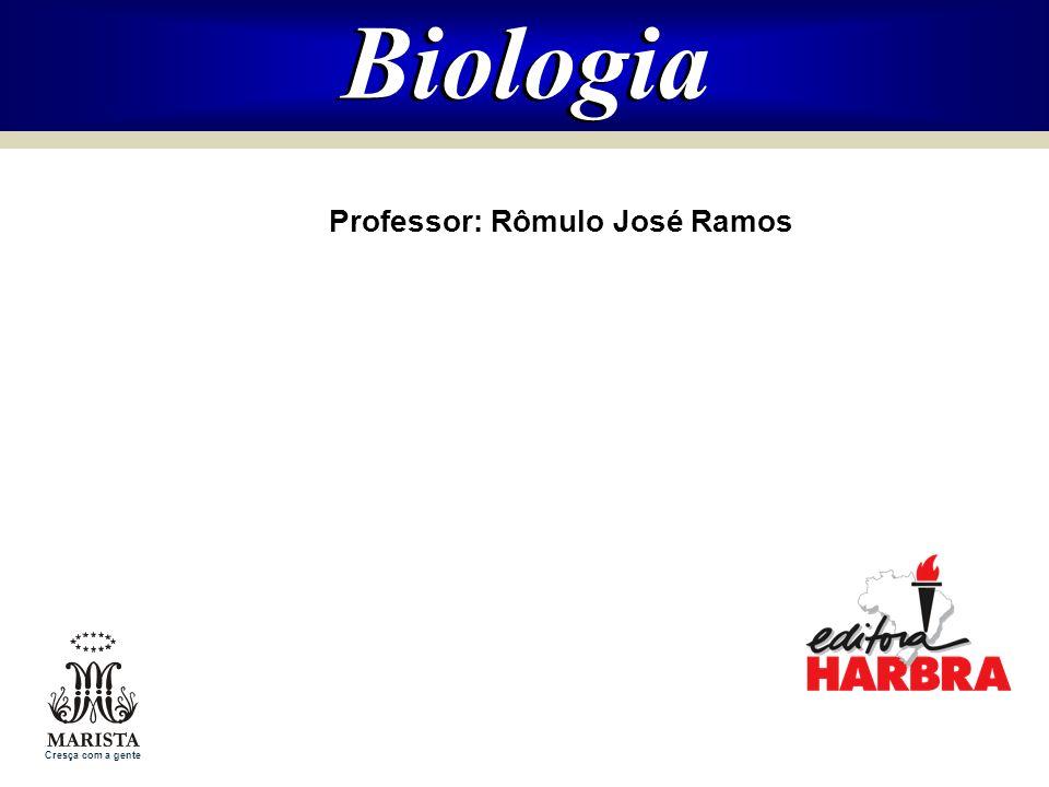 Professor: Rômulo José Ramos
