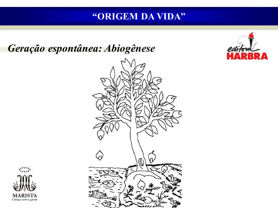 Geração espontânea: Abiogênese