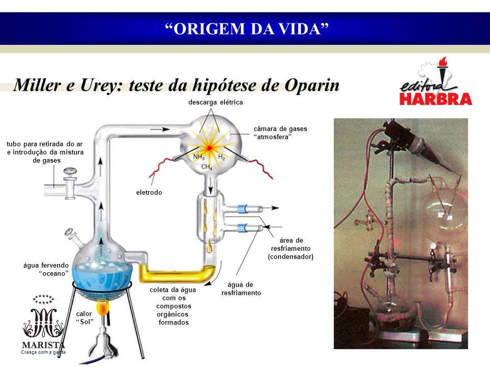 Miller e Urey: teste da hipótese de Oparin