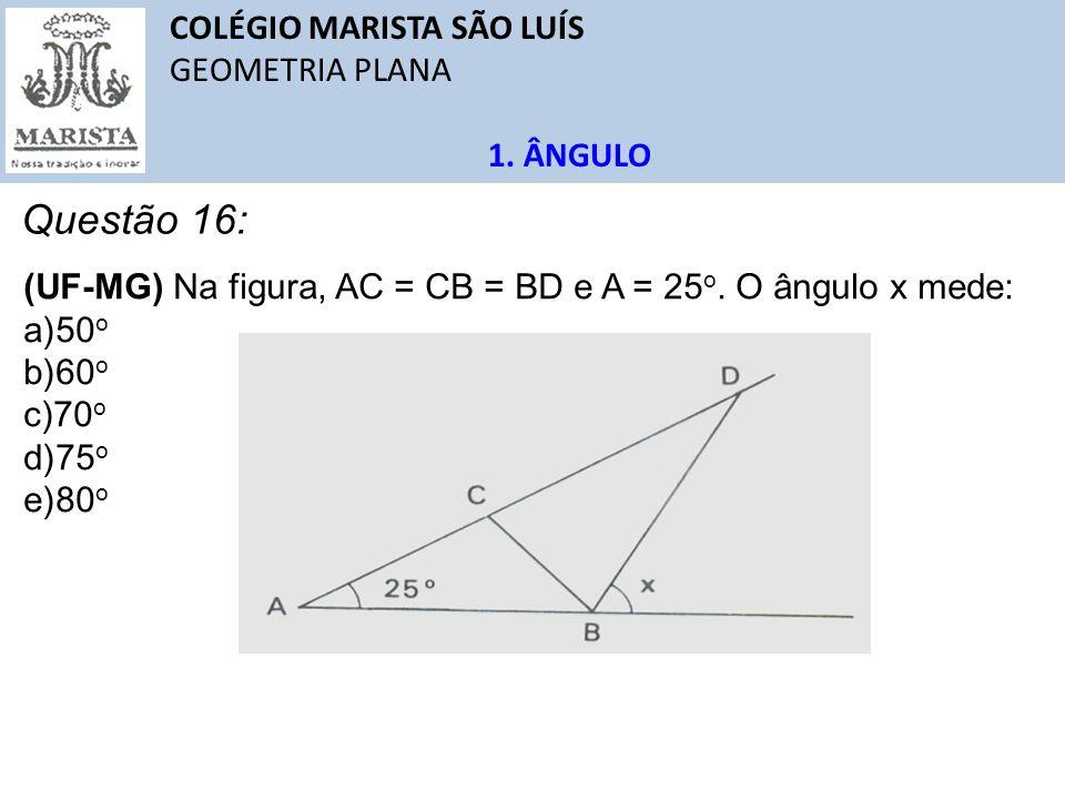 Questão 16: COLÉGIO MARISTA SÃO LUÍS GEOMETRIA PLANA 1. ÂNGULO