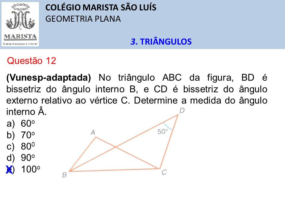 X COLÉGIO MARISTA SÃO LUÍS GEOMETRIA PLANA 3. TRIÂNGULOS Questão 12