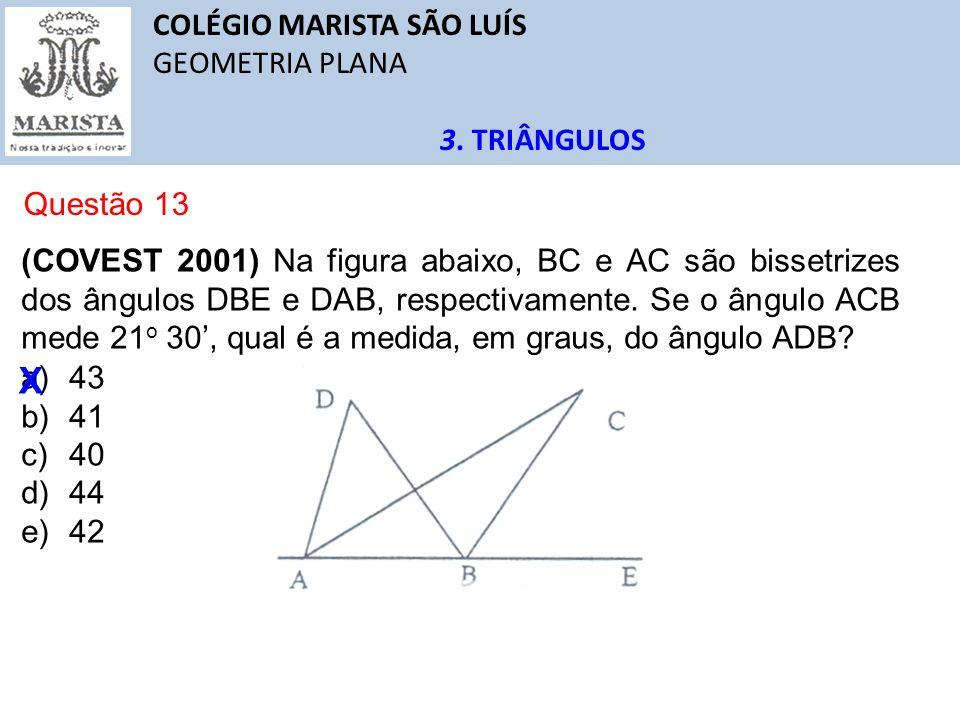 X COLÉGIO MARISTA SÃO LUÍS GEOMETRIA PLANA 3. TRIÂNGULOS Questão 13