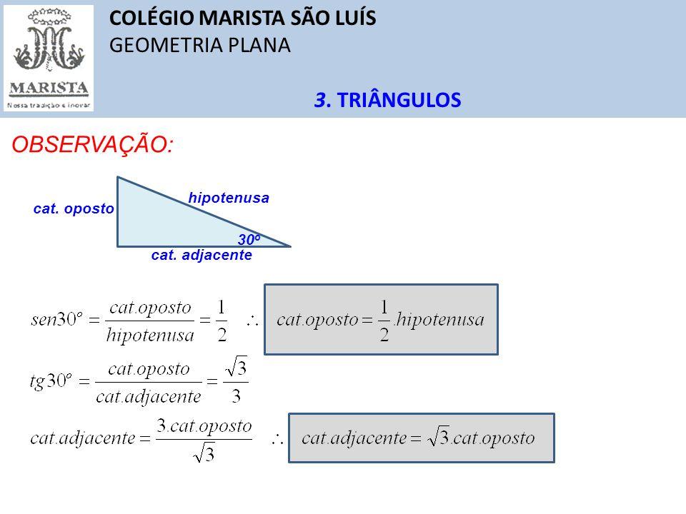 COLÉGIO MARISTA SÃO LUÍS GEOMETRIA PLANA 3. TRIÂNGULOS