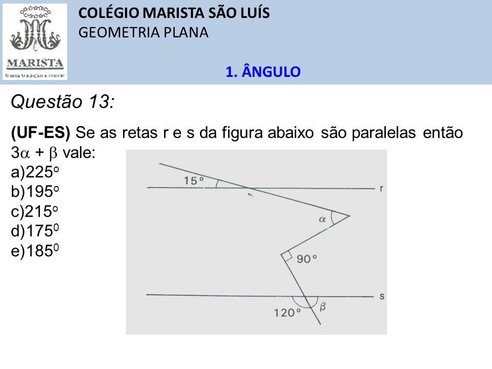 Questão 13: COLÉGIO MARISTA SÃO LUÍS GEOMETRIA PLANA 1. ÂNGULO