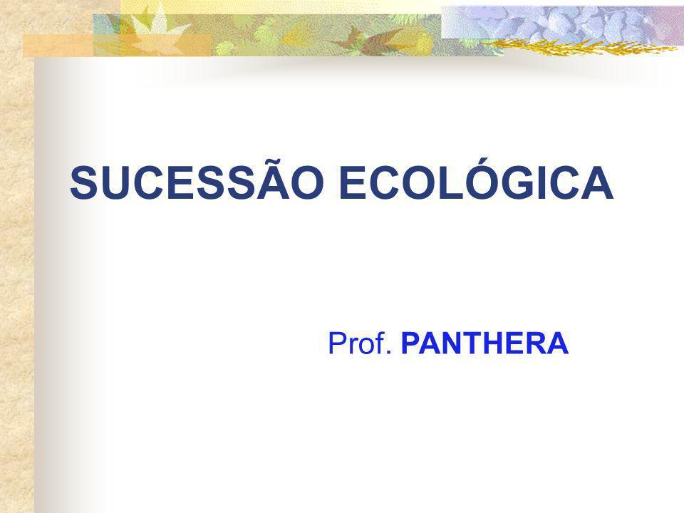 SUCESSÃO ECOLÓGICA Prof. PANTHERA