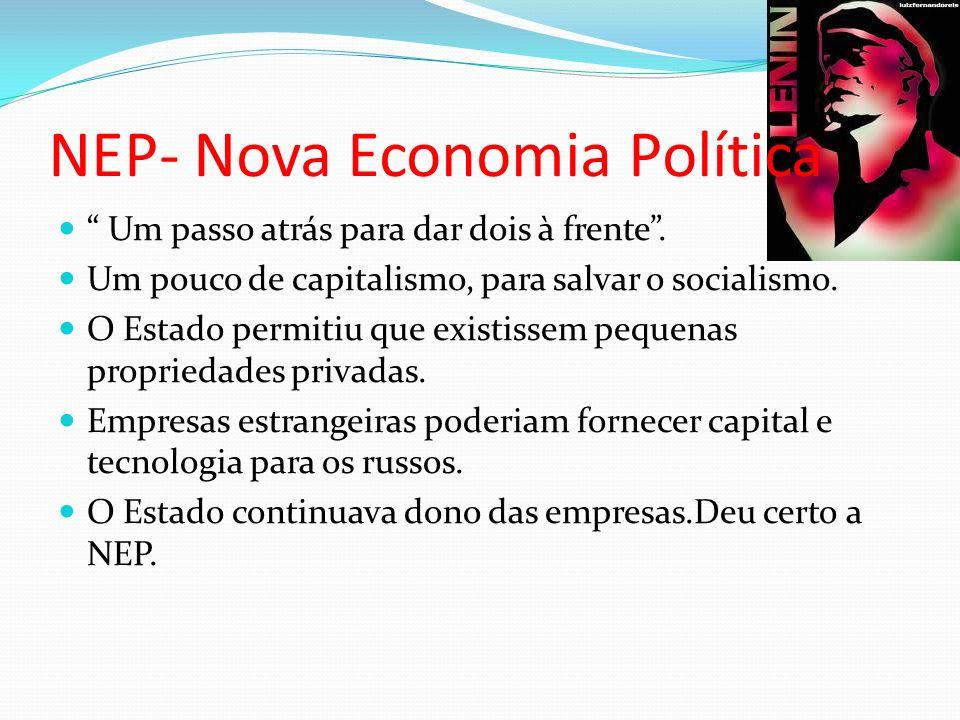 NEP- Nova Economia Política