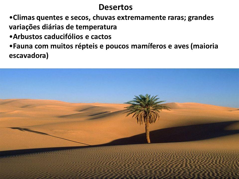Desertos Climas quentes e secos, chuvas extremamente raras; grandes variações diárias de temperatura.