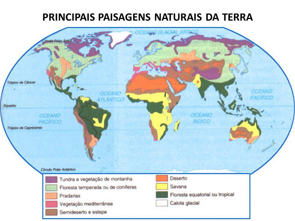 PRINCIPAIS PAISAGENS NATURAIS DA TERRA