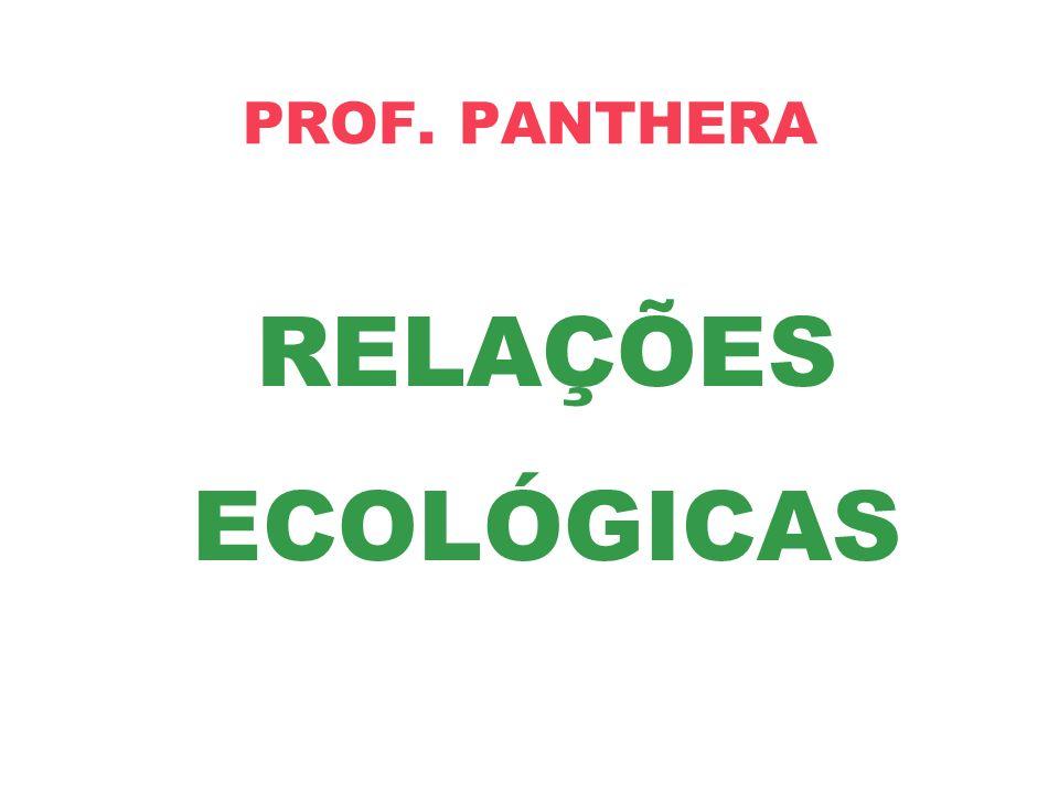 PROF. PANTHERA RELAÇÕES ECOLÓGICAS
