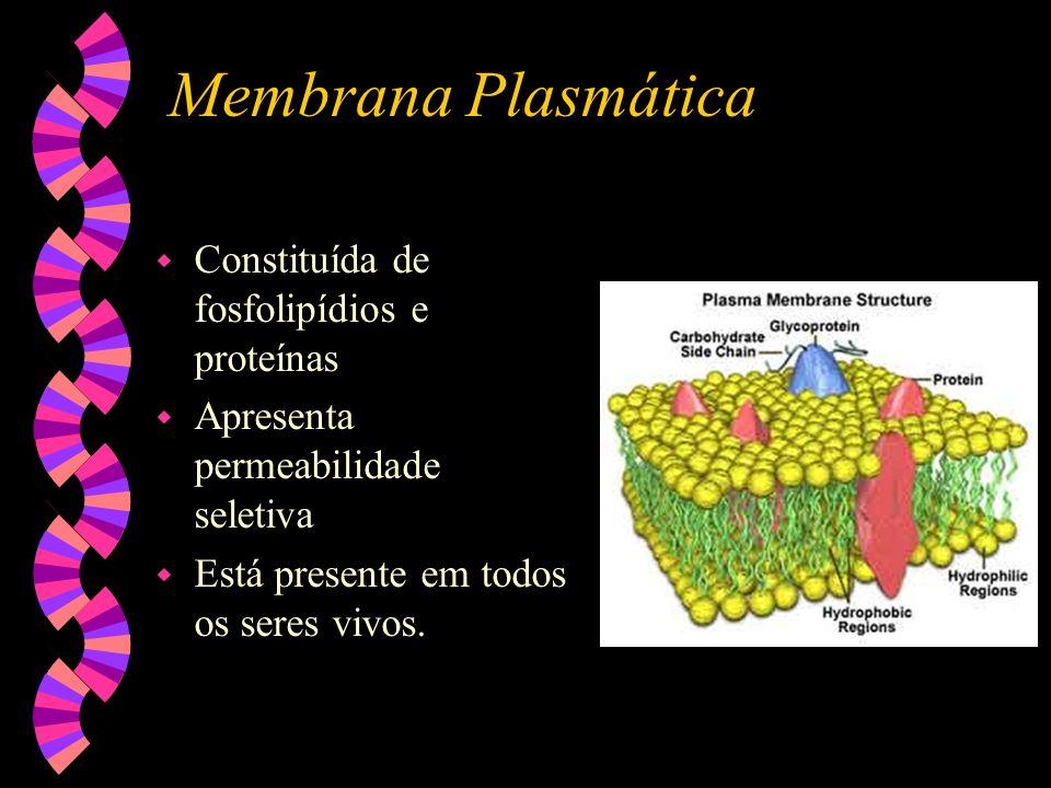 Membrana Plasmática Constituída de fosfolipídios e proteínas