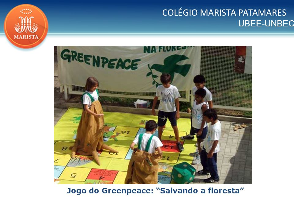 Jogo do Greenpeace: Salvando a floresta