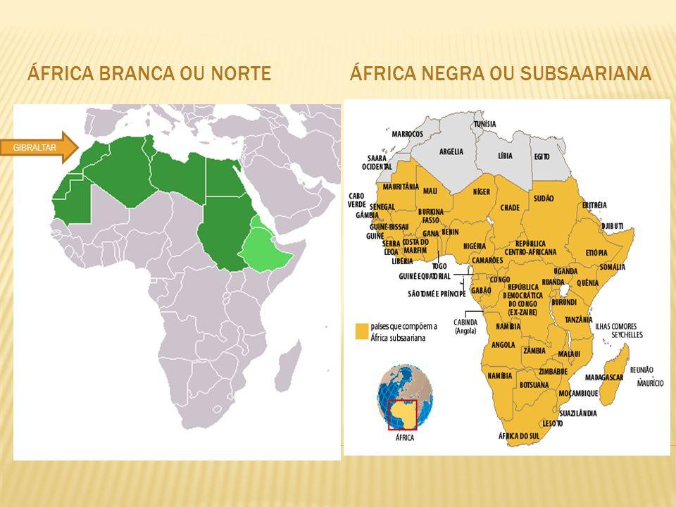 África negra ou subsaariana