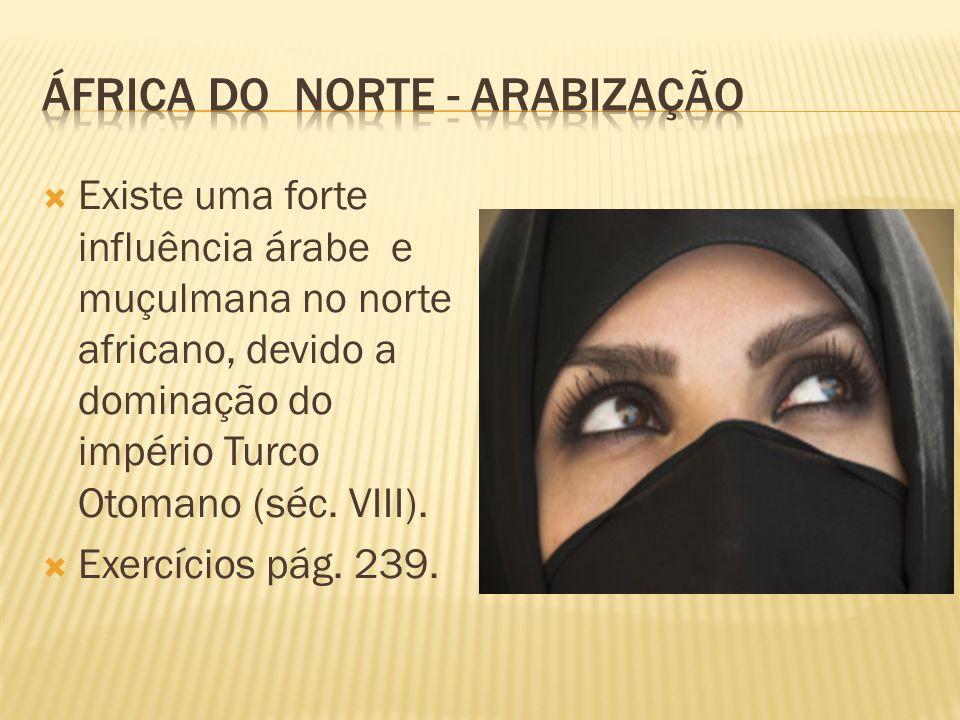 África do norte - arabização