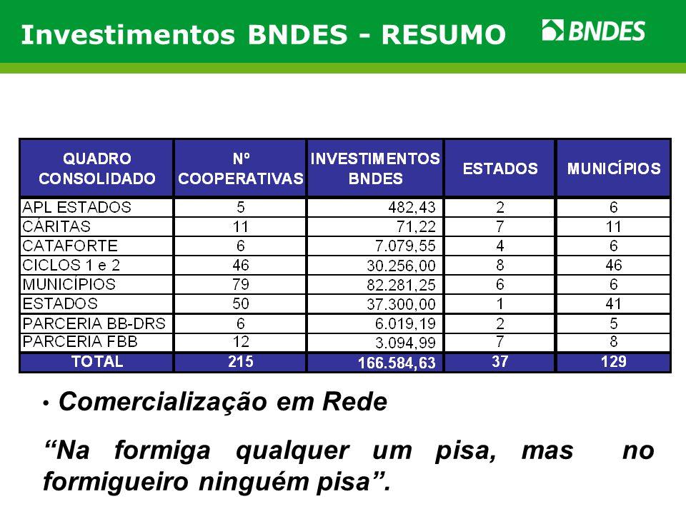 Investimentos BNDES - RESUMO