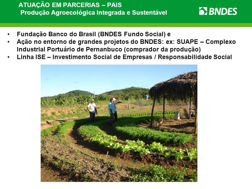 Fundação Banco do Brasil (BNDES Fundo Social) e