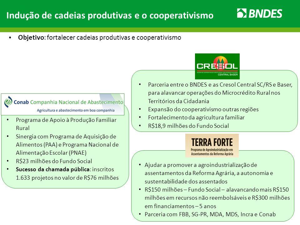 Indução de cadeias produtivas e o cooperativismo