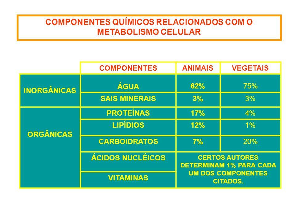 COMPONENTES QUÍMICOS RELACIONADOS COM O METABOLISMO CELULAR