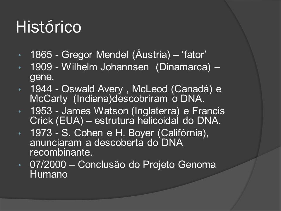 Histórico 1865 - Gregor Mendel (Áustria) – 'fator'
