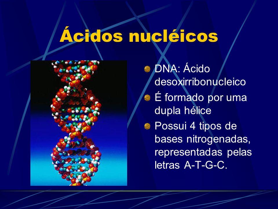 Ácidos nucléicos DNA: Ácido desoxirribonucleico
