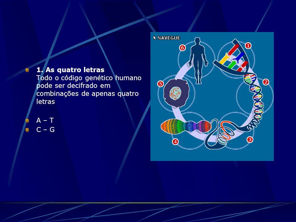 1. As quatro letras Todo o código genético humano pode ser decifrado em combinações de apenas quatro letras