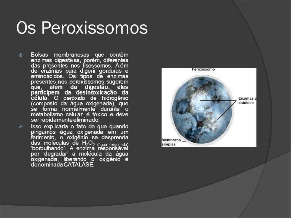 Os Peroxissomos