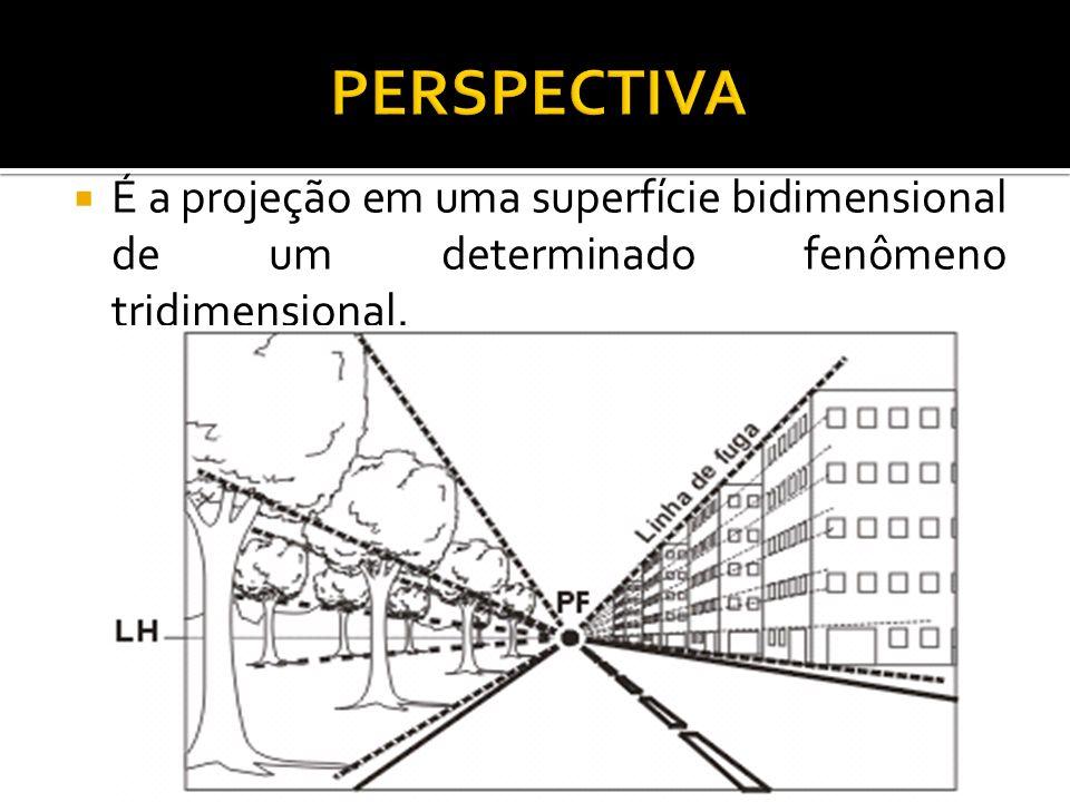 PERSPECTIVA É a projeção em uma superfície bidimensional de um determinado fenômeno tridimensional.