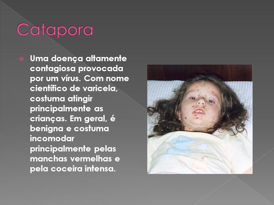 Catapora