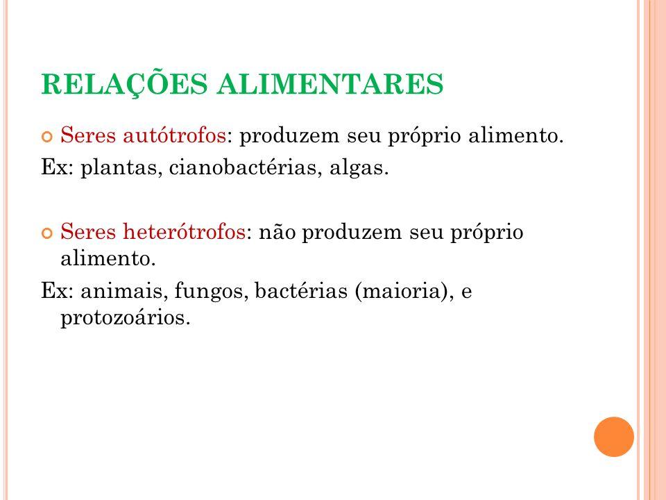 RELAÇÕES ALIMENTARES Seres autótrofos: produzem seu próprio alimento.