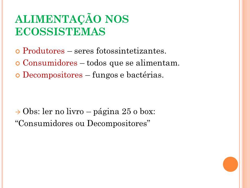 ALIMENTAÇÃO NOS ECOSSISTEMAS