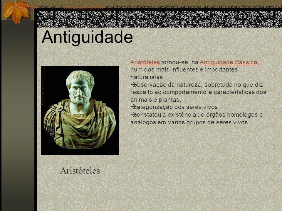 Antiguidade Aristóteles