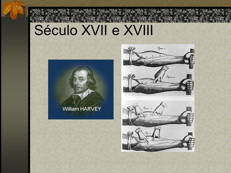 Século XVII e XVIII