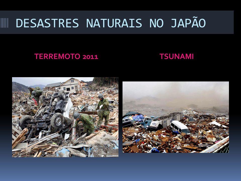 DESASTRES NATURAIS NO JAPÃO