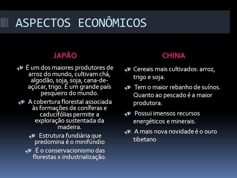 ASPECTOS ECONÔMICOS JAPÃO CHINA