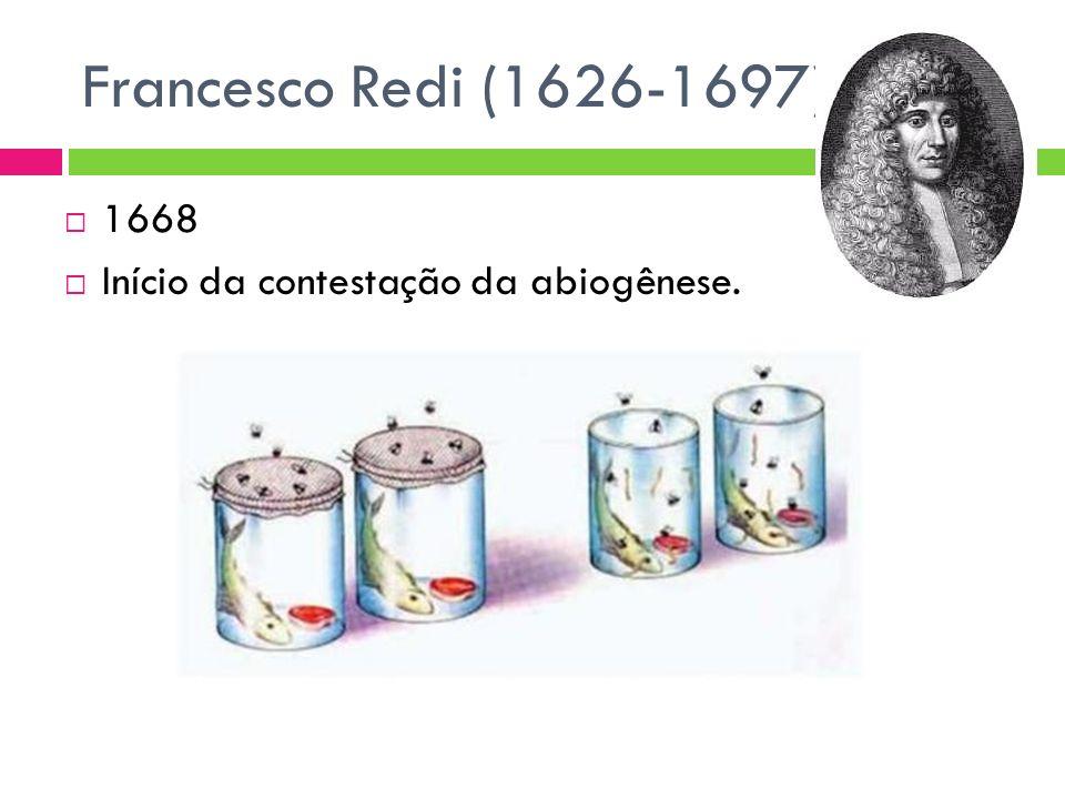 Francesco Redi (1626-1697) 1668 Início da contestação da abiogênese.