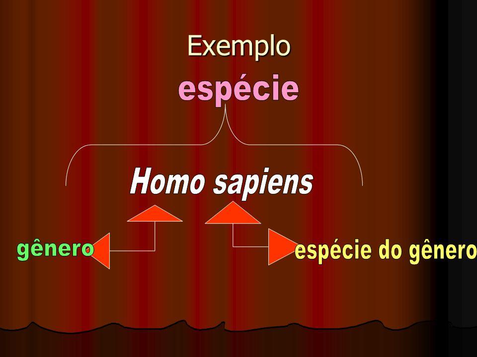 Exemplo espécie Homo sapiens gênero espécie do gênero