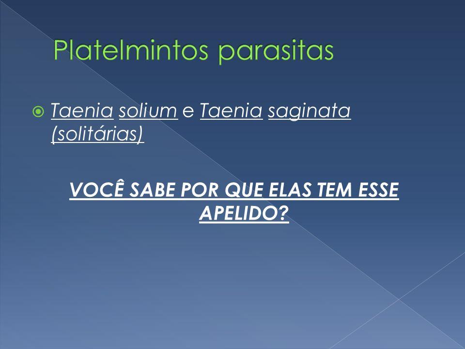 Platelmintos parasitas
