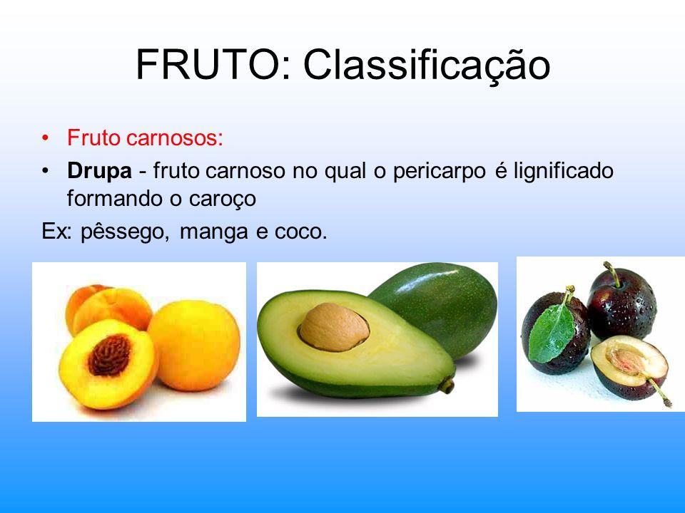 FRUTO: Classificação Fruto carnosos: